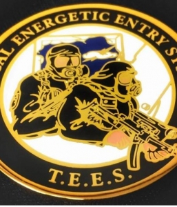 TEES Challenge Coin